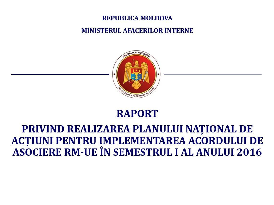 raport privind realizarea planului national de actiuni